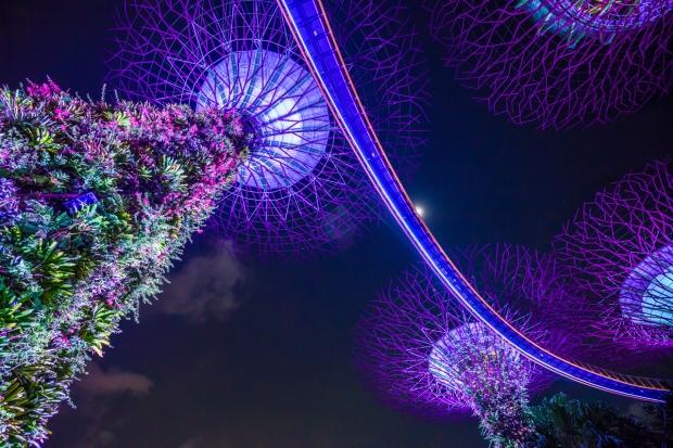 singapore226