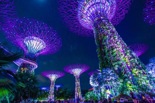 singapore227