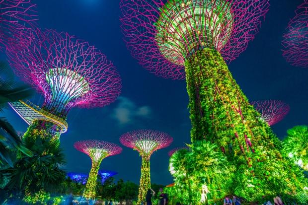 singapore228