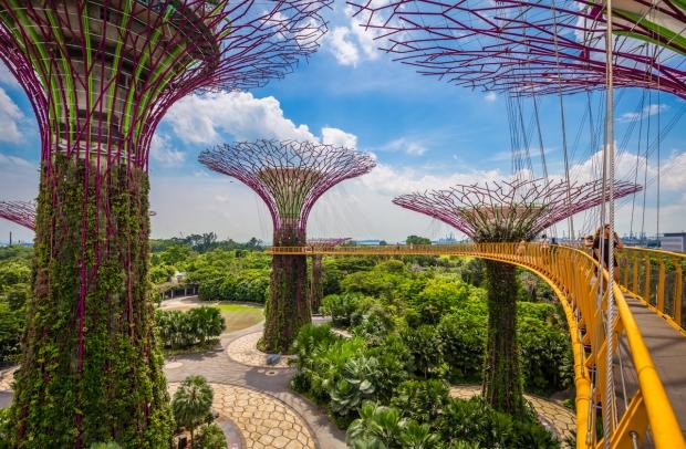 singapore37